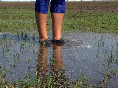 Árbitra Simone Xavier de Paula e Silva reconheceu que o estado do campo era ruim, mas alegou ter recebido ordens para dar início ao jogo, independentemente das condições do gramado.   Foto Flamengo