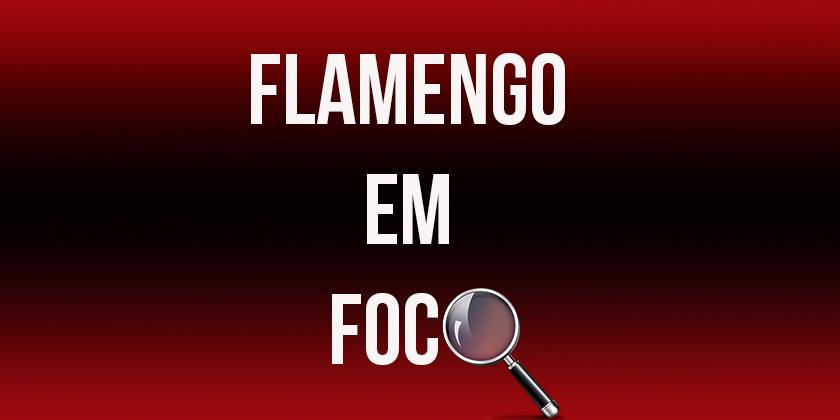 Banner Fla em foco v3