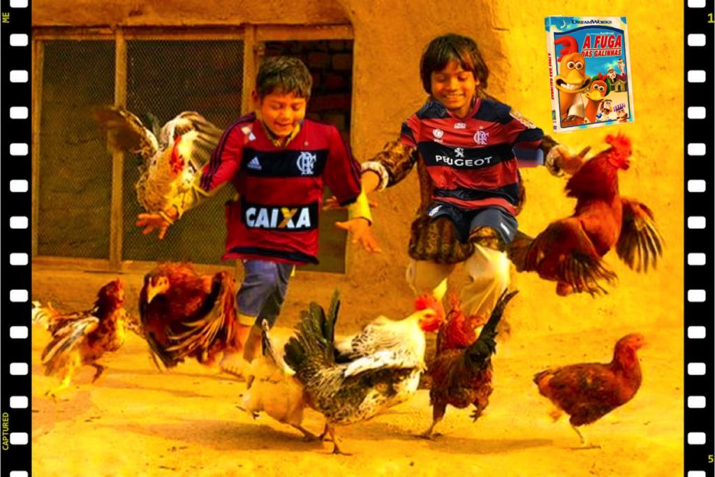 Fuga das galinhas1